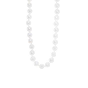 Ladies Pearl / 14 Kt W