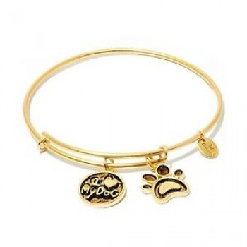 Chrysalis Pet Gold-Tone Bangle